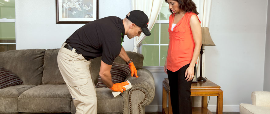 Covina, CA carpet upholstery cleaning