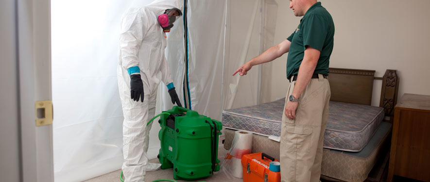 Covina, CA mold removal process